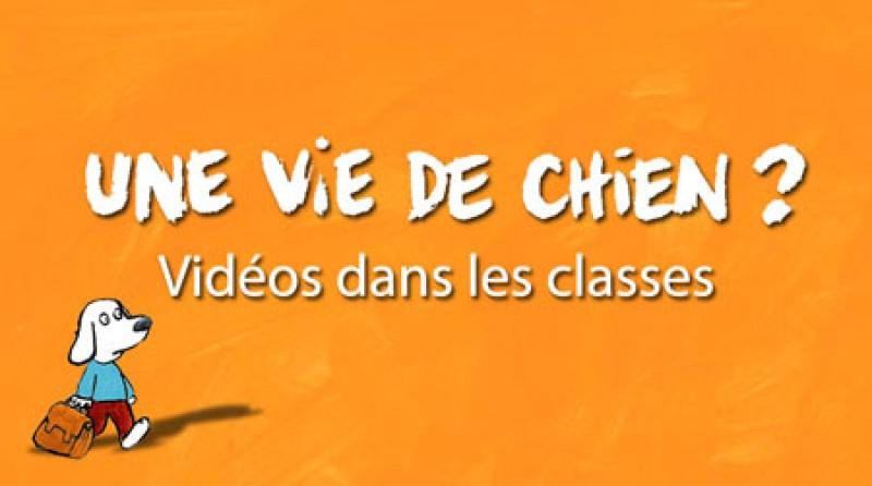 une_vie_de_chien_-_ideo_dans_les_classes1.jpg